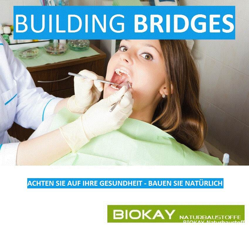 BIOKAY - Building Bridges auf www.Biokay.at